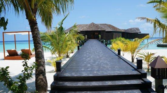 Lily Beach Resort & Spa : SPA