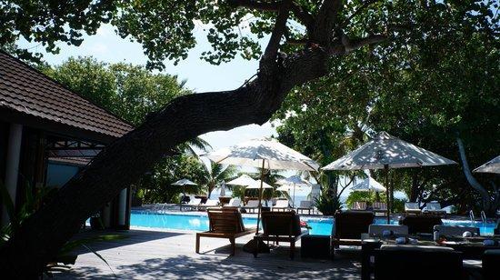 Lily Beach Resort & Spa: Piscine Vibes