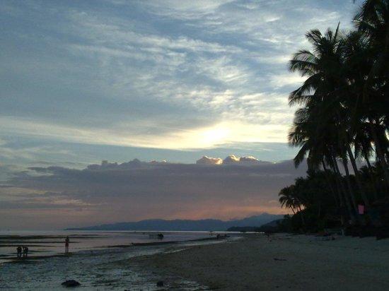 Anda White Beach Resort : Sunset, low tide