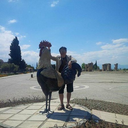 Road Runner Travel - Day Tours : Denizil Rooster