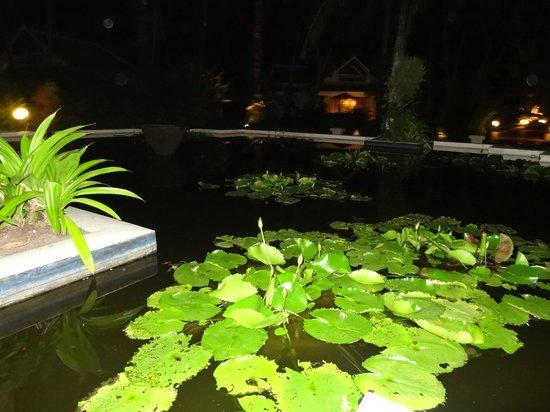 Santiburi Koh Samui: Sehr schöne Gartenanlage