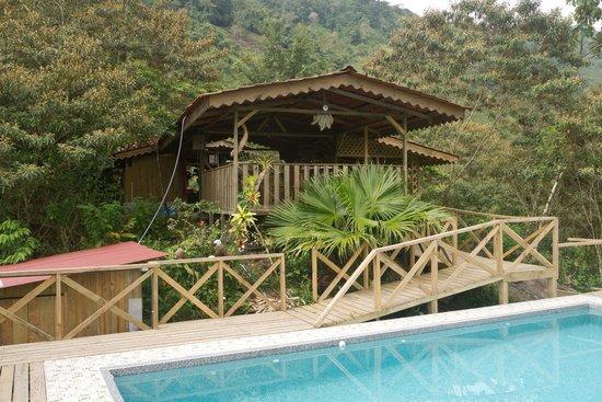 Corredores del Pacuare: Blick vom Pool auf den Essbereich