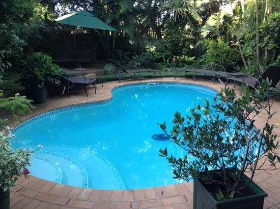 Santa Lucia Guesthouse: la piscine