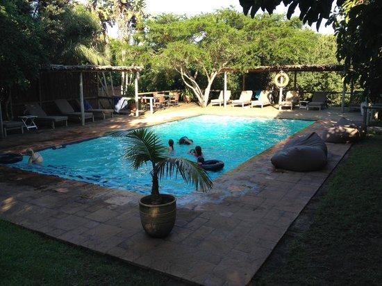 Rocktail Camp: piscine