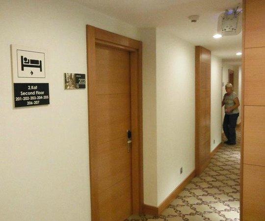 Parkhouse Hotel : Corridor on 2nd floor - looks new