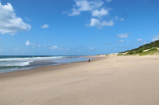 Wilderness Safaris Rocktail Camp: plage déserte à 15 minutes à pied