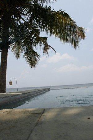 Purity at Lake Vembanad: Pool