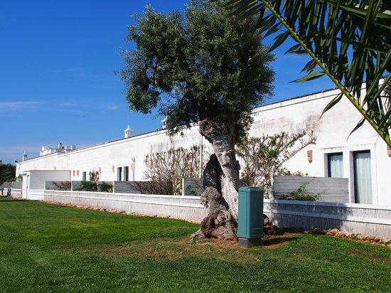 Masseria Torre Maizza : terrasses rooms 16-30