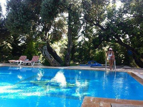 Kizilbuk Wooden Houses: havuz