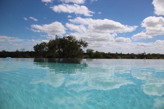 Nkorho Bush Lodge : piscine de reve