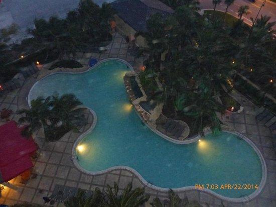 Palm Beach Marriott Singer Island Beach Resort & Spa: Lagoon Pool