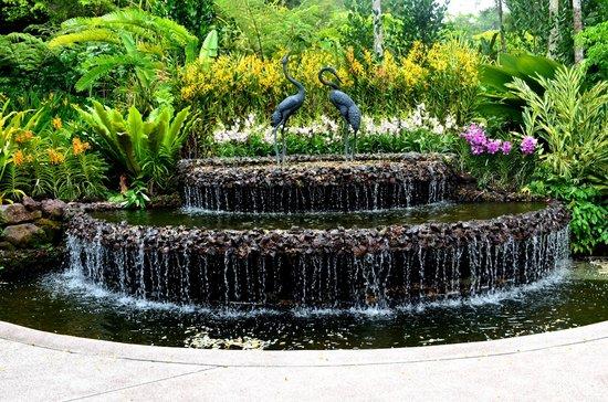 Jardines Botánicos de Singapur: National Orchid Garden