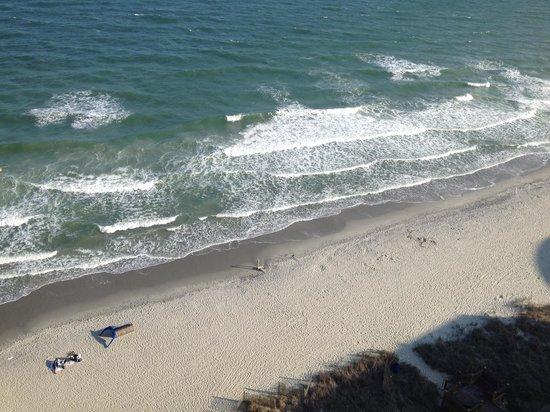 Ocean Reef Resort: View