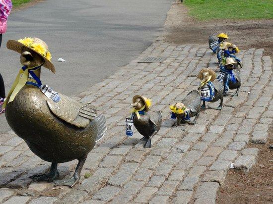 Jardín Público de Boston: Marathon Ducklings complete with runner bibs