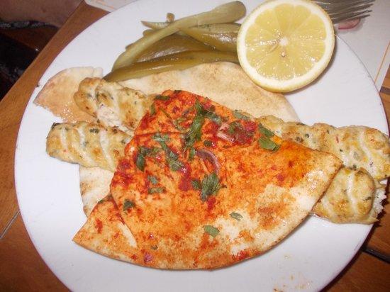 wafi gourmet - kebab di pollo