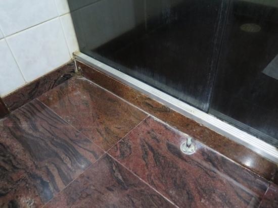 Catussaba Resort Hotel : shower cubicle