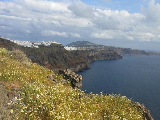 Skaros Rock: Beautiful view with lots of flower.