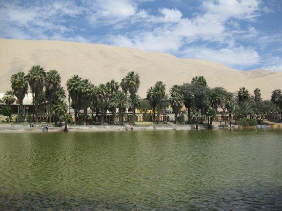 Viajes Paracas : Ica - Lagoon