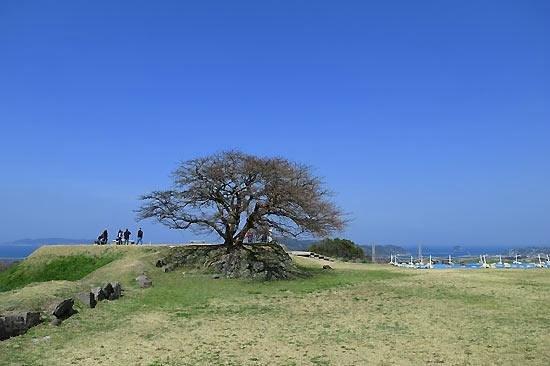 Nagoya Castle Ruins : 名護屋城跡