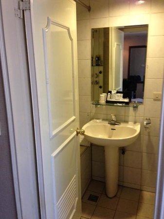 Dahshin Hotel : バスルームです