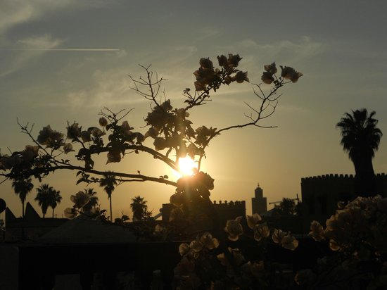 Riad Diana: sunset from Terrace