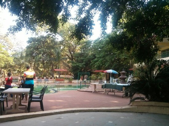 Adamo The Resort : Pool area
