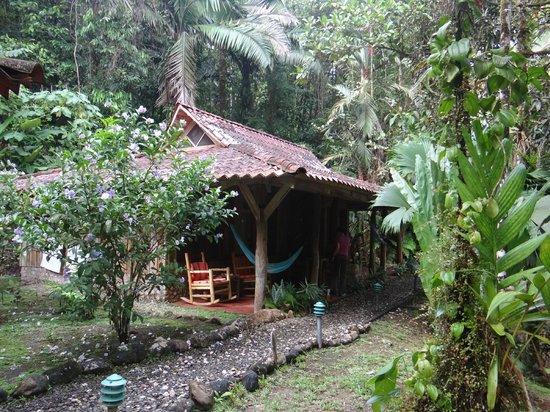 Esquinas Rainforest Lodge : Zimmer und Terrasse