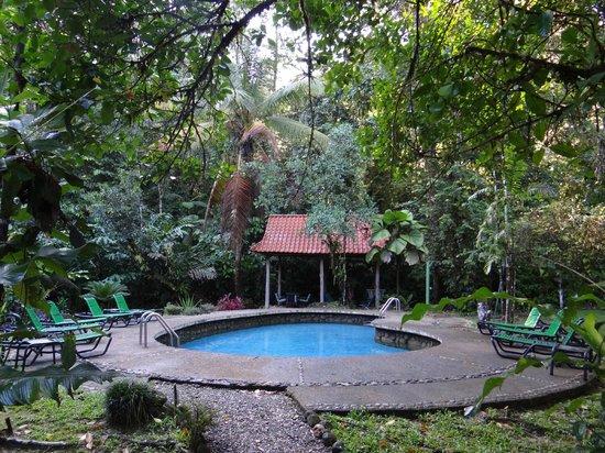 Esquinas Rainforest Lodge: Naturpool