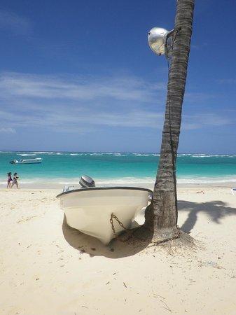 Hotel Riu Naiboa: plage en face de l'hôtel