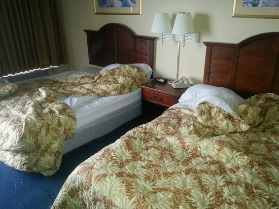 The Patricia Grand, Oceana Resorts : Bedroom condition when we arrived