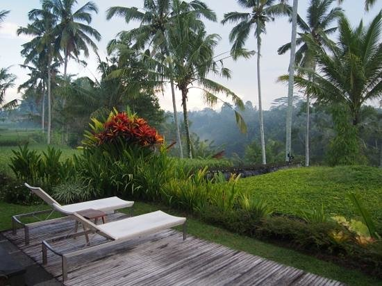 Chapung SeBali Resort and Spa: The outlook from our villa.