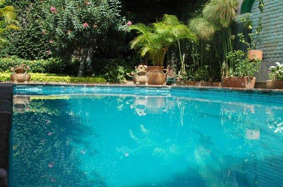 Villa Bonita Les Terrasses : La piscina