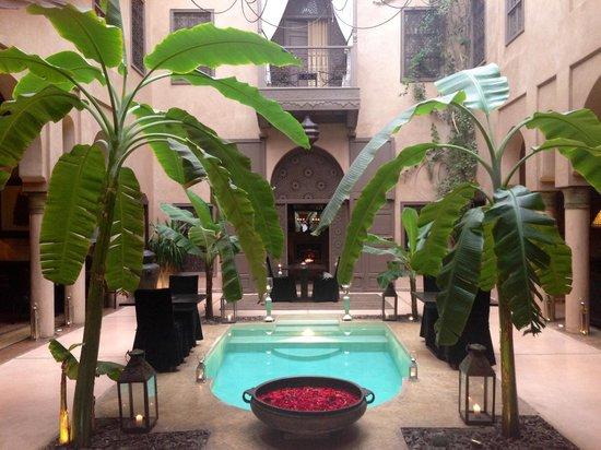 Riad Noir d'Ivoire: Winter Garden