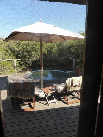 Pumba Private Game Reserve: patio with plunge pool