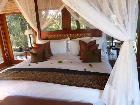 Pumba Private Game Reserve: Bed