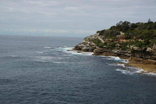 Bondi to Coogee Beach Coastal Walk: Entlang der Küste