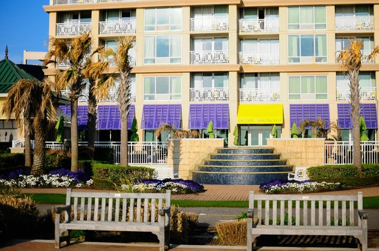 Oceanaire Resort Hotel: View from the beach
