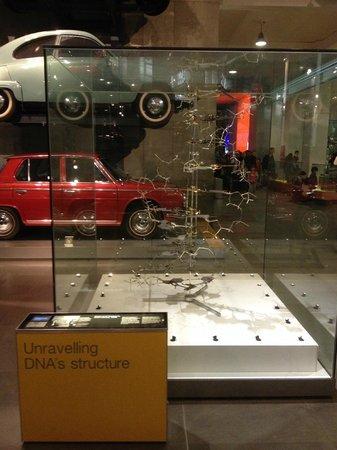 Science Museum: Estrutura de DNA