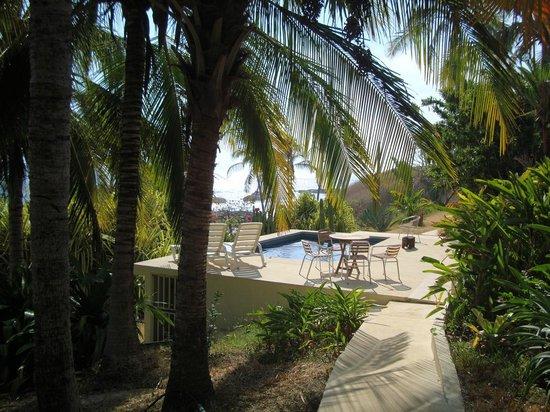 Casas Pelicano: Refreshing pool