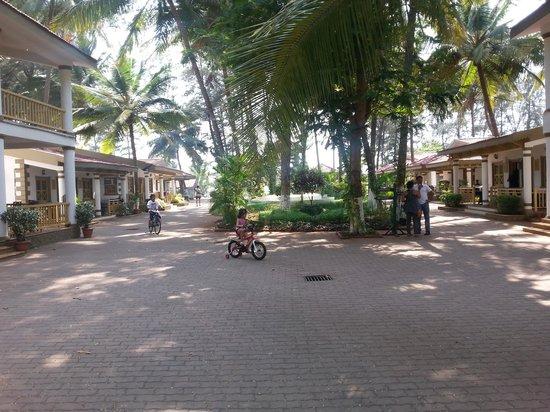 Golden Swan Beach Resort : insidee view