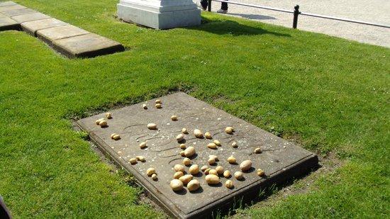 Parc de Sanssouci : tomba Federico il Grande e tombe dei suoi cani