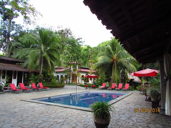 Casa Corcovado Jungle Lodge: la piscina
