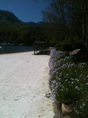 Rumbling Bald Resort on Lake Lure: Lake Lure Shore in April