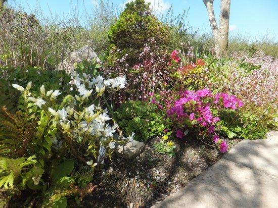 The Old Railway Yard B&B: Suzanne's Garden