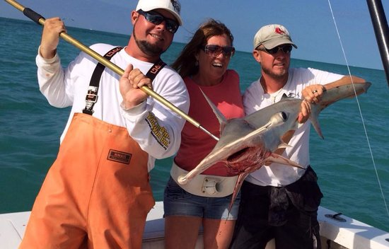 Kristin K Charters SportFishing : Hammer Head Shark