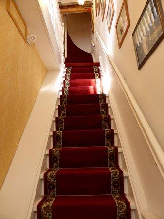 Maes B & B : Amsterdam Stairs