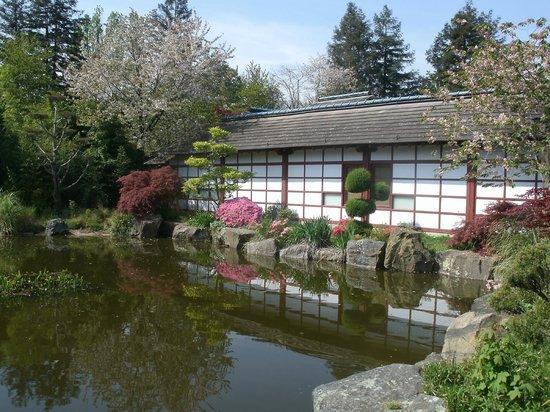 Pont photo de jardin japonais nantes tripadvisor for Jardin japonais nantes