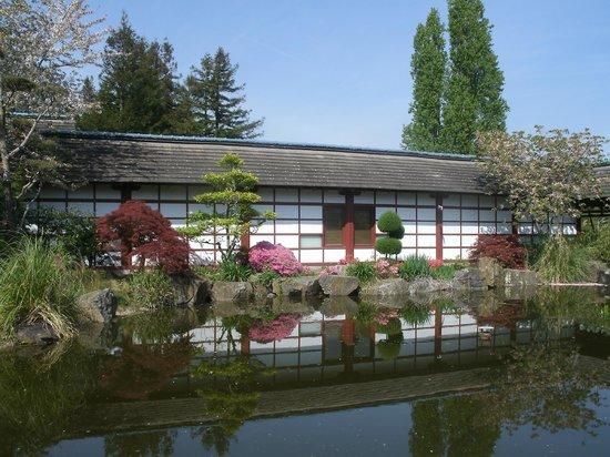 Fleuri photo de jardin japonais nantes tripadvisor for Jardin japonais nantes