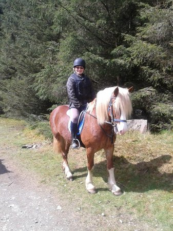 Caeiago Riding Centre: The beautiful Ozzie