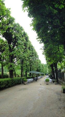 Musée Rodin : Outdoor tables Garden cafe